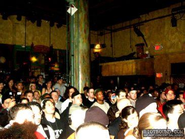 47_Concert_Crowd