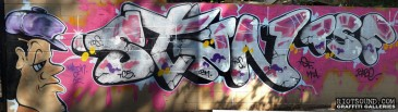 STAN_TS5_Graffiti_Art