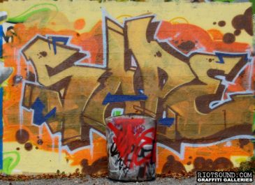 Sare_Graffiti
