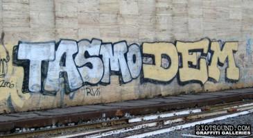 TASMO_DEM