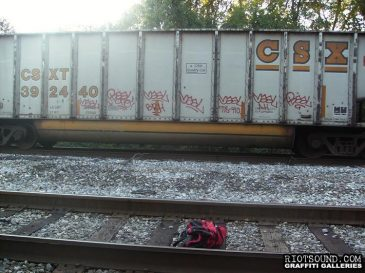 Freight_Train_Graffiti