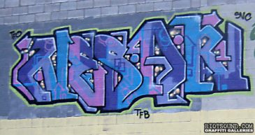NESAR_TFB_SNC