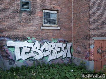 tes_crew